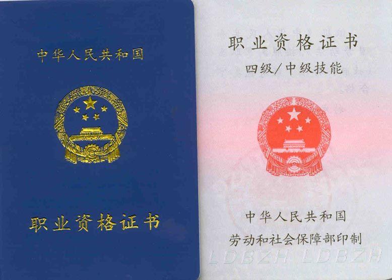 国家职业资格证书样式?如何进行职业技能鉴定? 资料 第2张